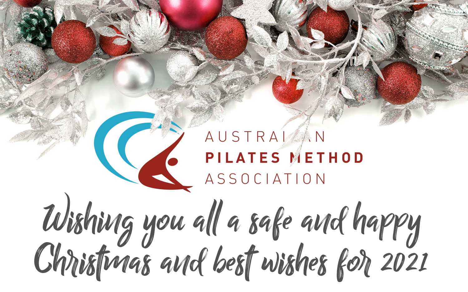Merry Christmas from the APMA Council